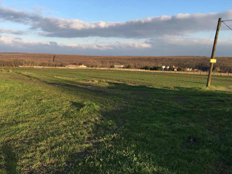 أرض زراعية للاستثمار والسكن في سلفري